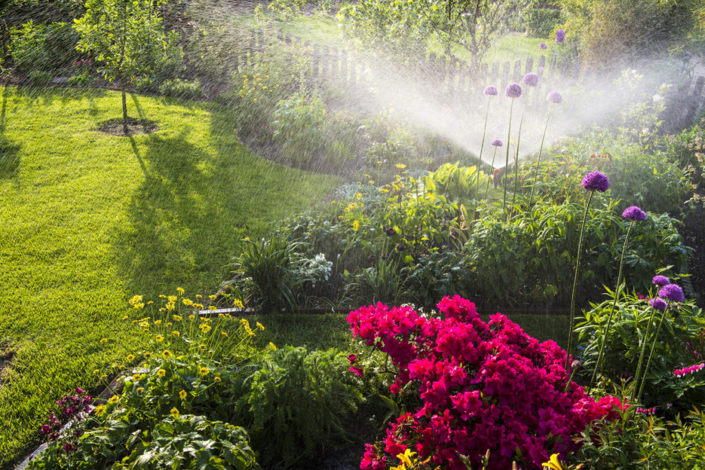Flower Bed Being Watered