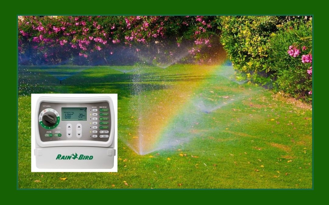 Old-School Irrigation Timers vs. Smart Controllers