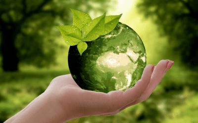 Landscape Irrigation and Climate Change